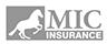 MIC Insurance - Millennium